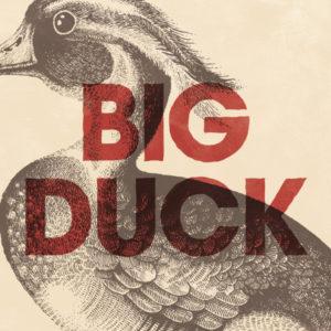 Big Duck Album Cover